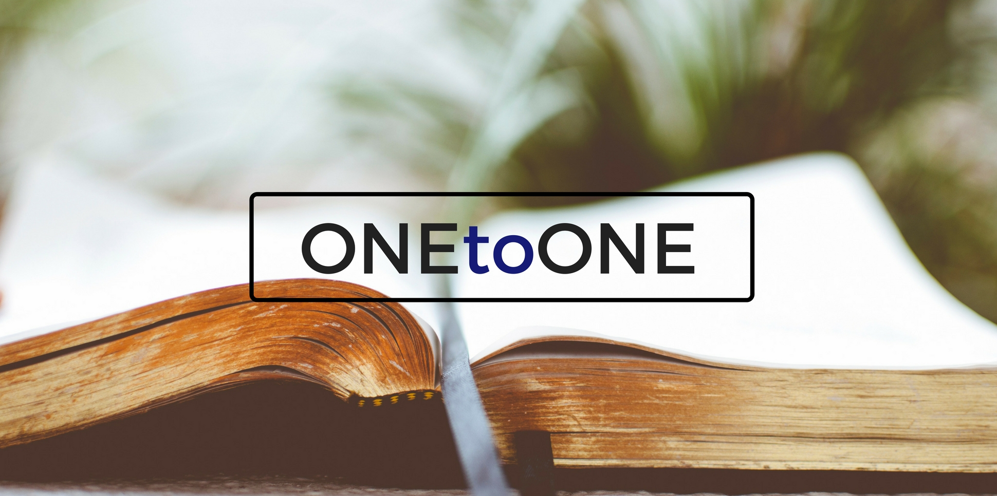 onetoone-website-high-res